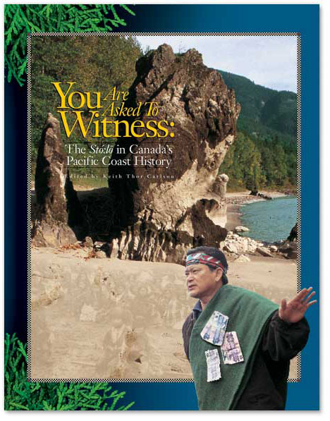 You are asked to Witness: book cover